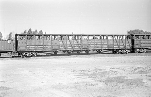 12.1971,Port Augusta - cattle van CB754 CB755 on common underframe - before coding as CE755