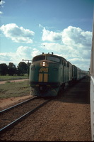 30.9.1986 GM3 Jamestown hauling Alice crossing Indian Pacific
