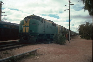 22.7.1989,Cook GM33 + GM36 on Indian Pacific
